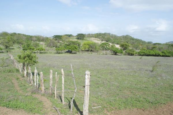 http://property-nicaragua.com/pedrodev/wp-content/uploads/2015/06/Rancho-Los-Robles-03-600x399.jpg