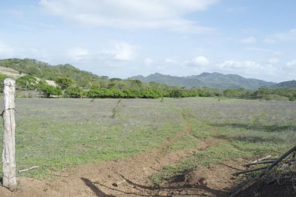 http://property-nicaragua.com/pedrodev/wp-content/uploads/2015/06/Rancho-Los-Robles-04-600x399.jpg