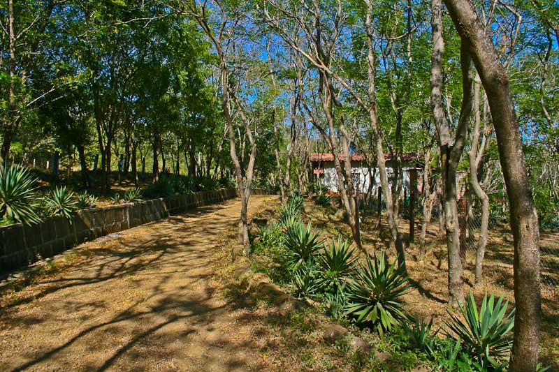 http://property-nicaragua.com/wp/wp-content/uploads/2012/12/Marsella-Valley-Lots-3.jpg