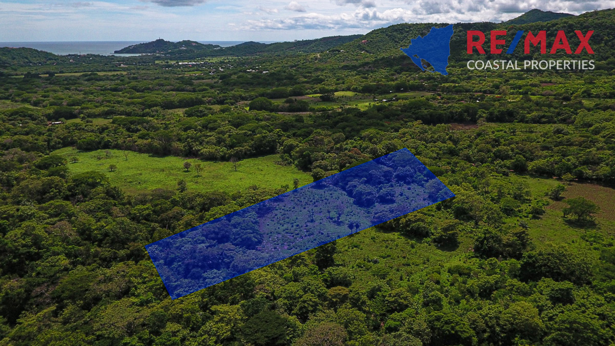 https://property-nicaragua.com/pedrodev/wp-content/uploads/2020/06/El-Oro-Hobby-Farms.jpg