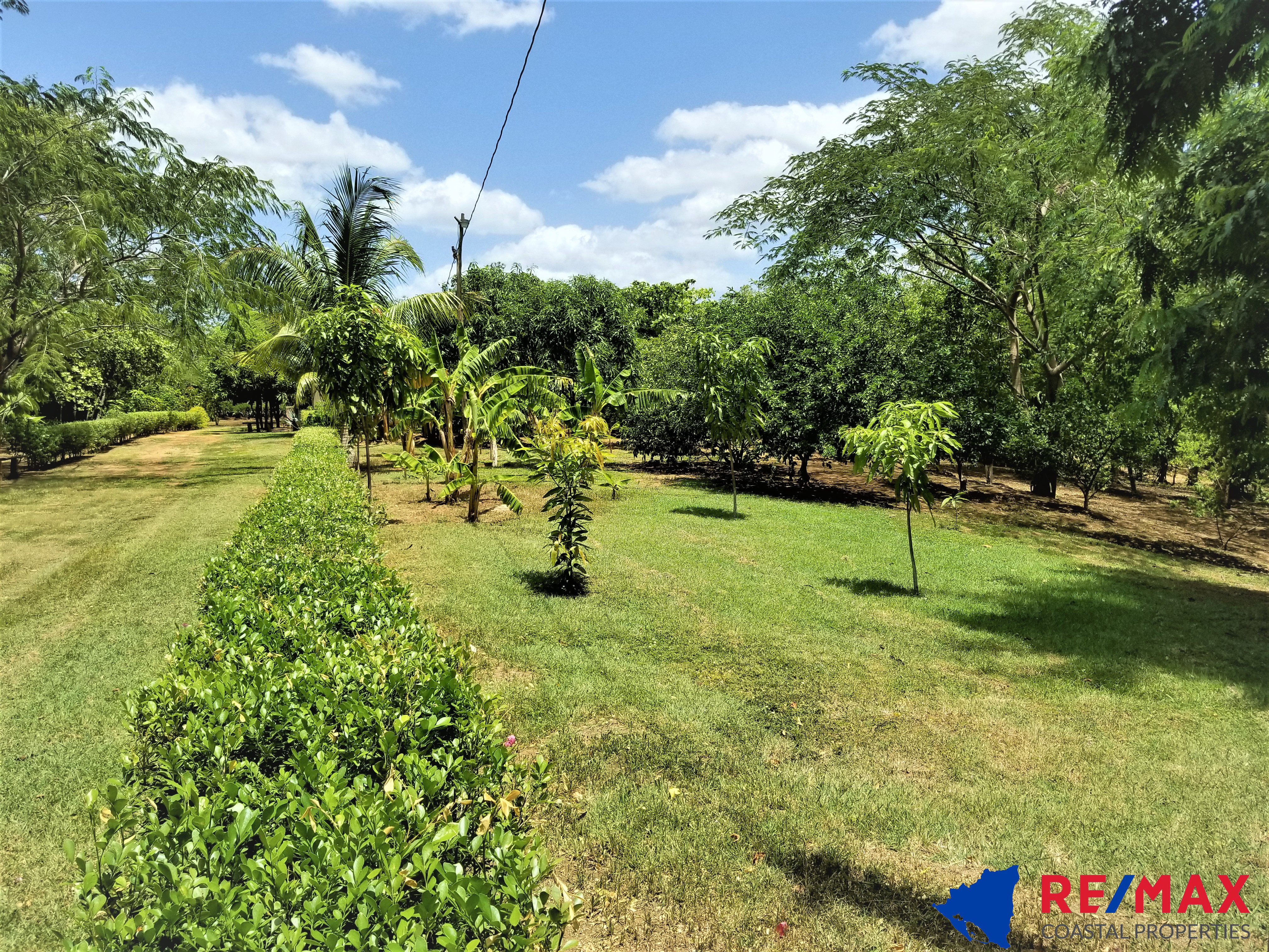 https://property-nicaragua.com/pedrodev/wp-content/uploads/2021/07/In-touch-with-nature-44.jpg